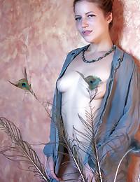 Softcore Beauty -..
